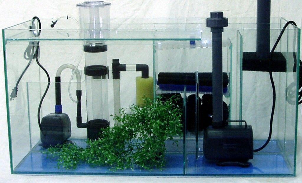 Aquarium Accessories Online